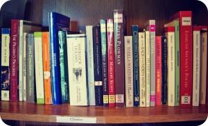 bookshelf (1)